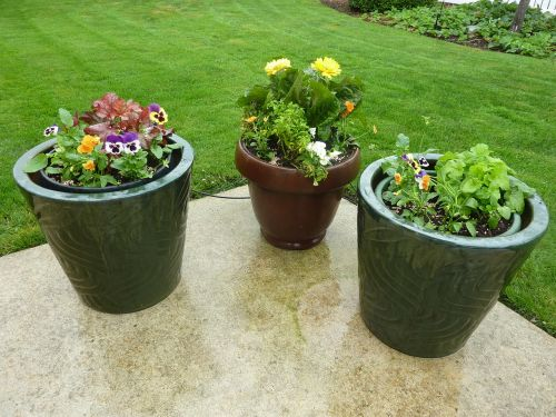 gėlės,puodai,terasa,puodai,konteineriai,sodas,augalas,augalai,konteineris,apdaila,dekoratyvinis,keramika,trys,kiemas,kiemo apdaila