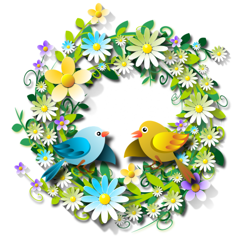 flowers floral flowery