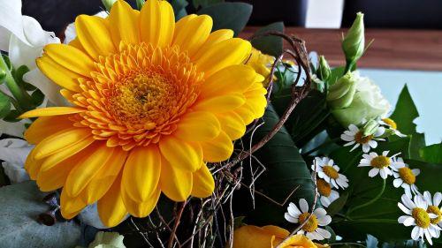 flowers gerbera bouquet of flowers