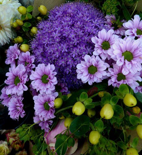 flowers purple nature