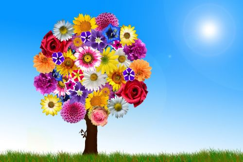 flowers tree harmony