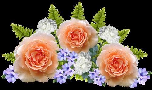 gėlės,išdėstymas,apdaila