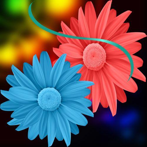 flowers flowers colors colors