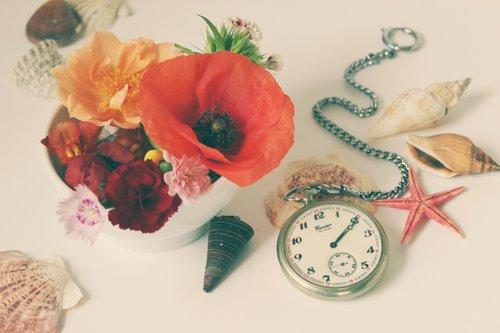 flowers  still life  clock