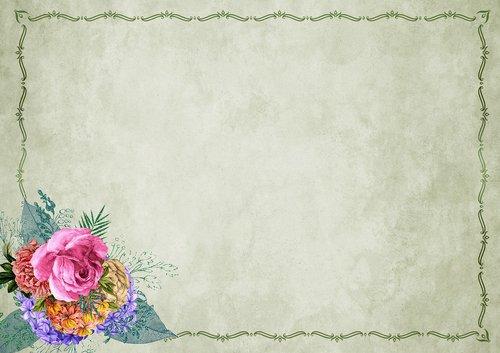 flowers  frame  background image