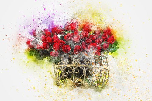 flowers  roses  bouquet