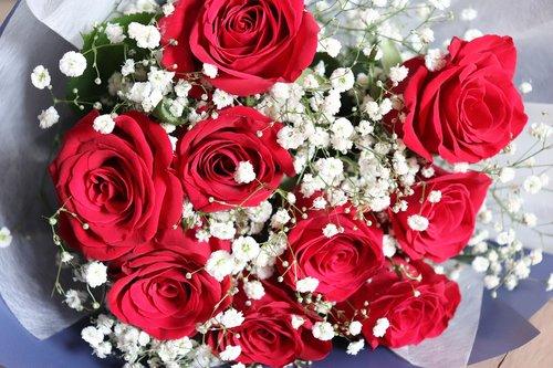 flowers  flower  bouquet