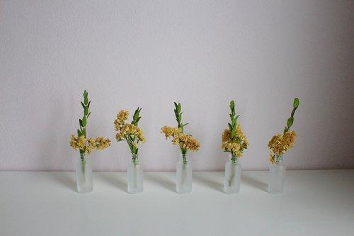flowers  vase  deco