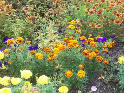 flowers park fairport