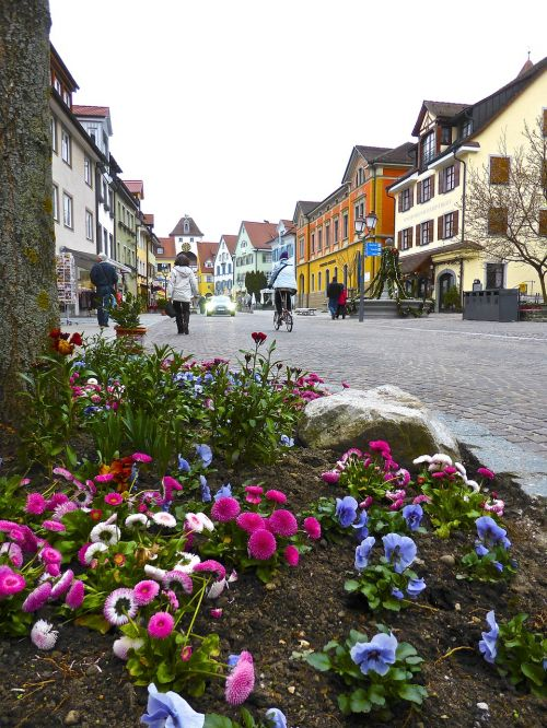 flowers streetscape view