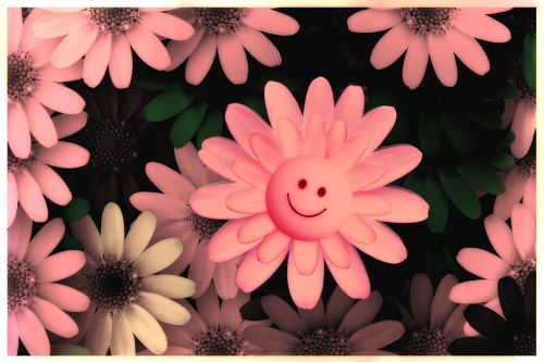 flowers smilie happy
