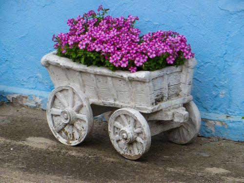 flowers garden decoration