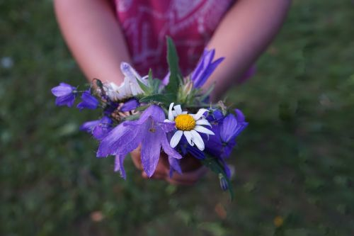 flowers strauss purple