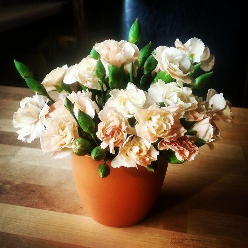 flowers bouquet bouquet of flowers
