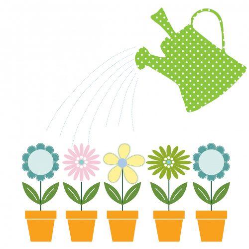 gėlė, gėlės, puodai, gėlių & nbsp, puodai, laistyti & nbsp, gali, vanduo, laistymas, spalvinga, mielas, vanduo & nbsp, lašai, žalias, rožinis, mėlynas, oranžinė, Iliustracijos, clip & nbsp, menas, menas, iliustracija, izoliuotas, balta, fonas, Scrapbooking, sodas, Laisvas, viešasis & nbsp, domenas, gėlės & amp, laistyti gali klipas