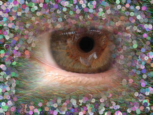 Flowers In Eye