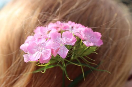 flowers in her hair pink small flowers
