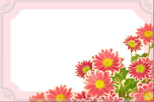 Flowers - Wishes Card