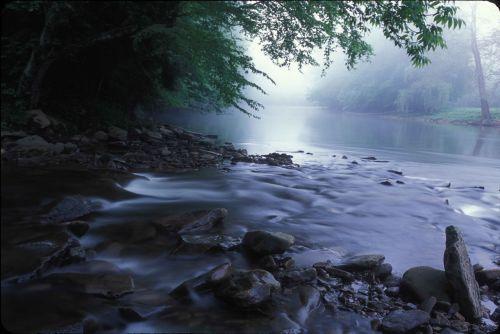 flowing water stream wilderness