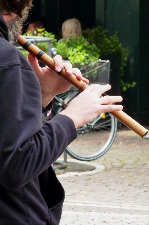 flute flute game flautist