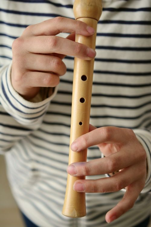 flute recorder play the flute