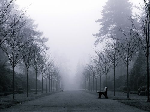 fog weather mood