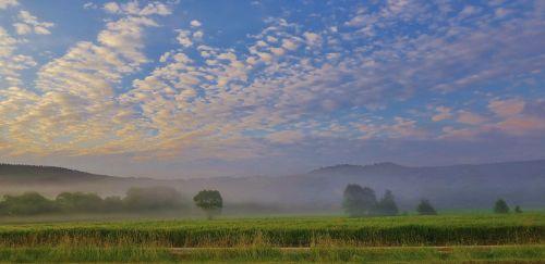 fog fleecy landscape