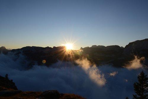 fog  sun  alpine