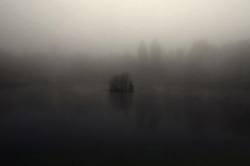 fog mysterious engiweiher