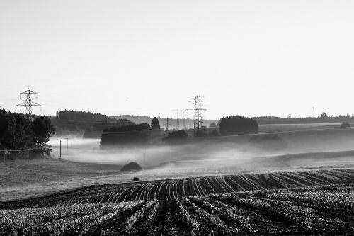 fog sunrise morning mist