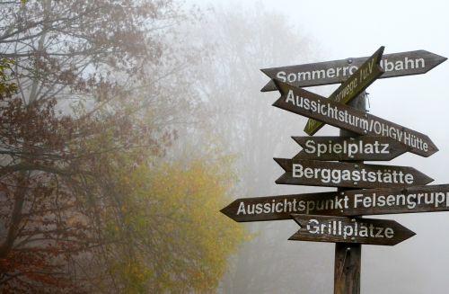 fog directory decisions