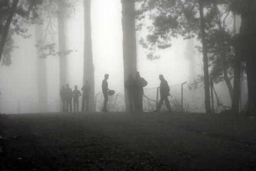 fog mist landscape