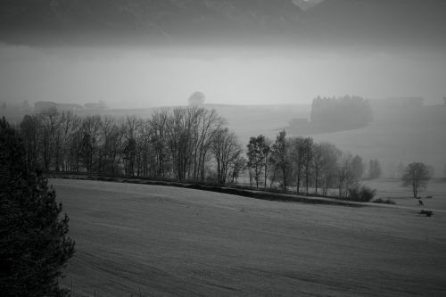 fog mountains landscape
