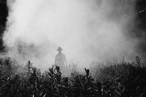 fog steam person