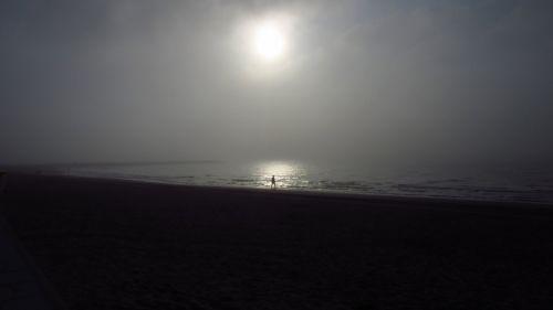 fog beach mood