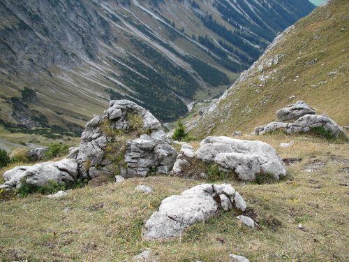 foghorn stones overgrown