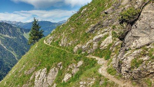 foghorn  glide path  oytal