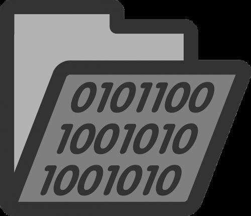 folder binary directory