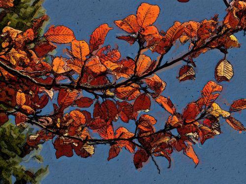 foliage branch tree