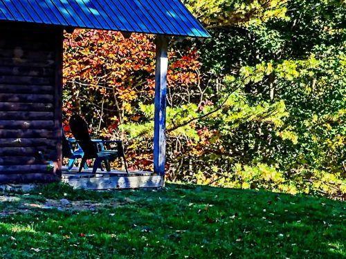 Foliage Cabin Porch