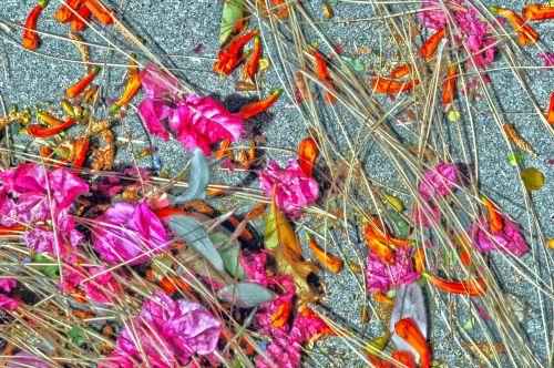 Foliage Debris Background - Pink