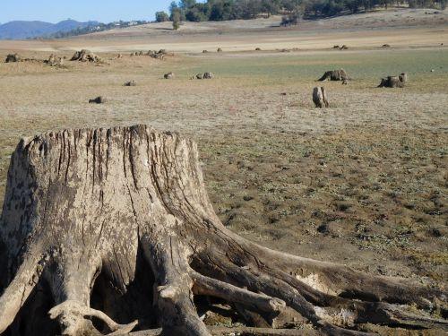 Folsom Lake Drought 62