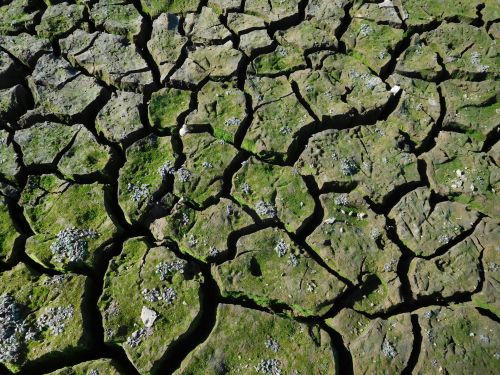 Folsom Lake Drought 66