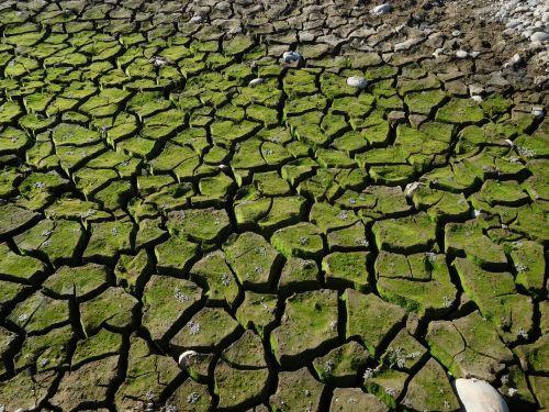 Folsom Lake Drought 84