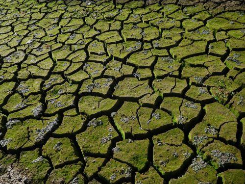 Folsom Lake Drought 89