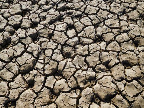 Folsom Lake Drought 94