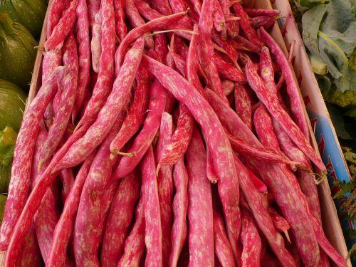 food vegetables beans