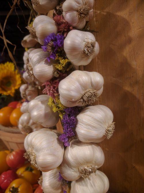 garlic vegetable group