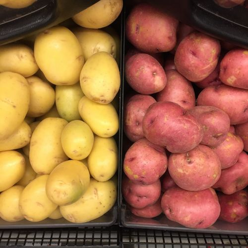 food potato nutrition