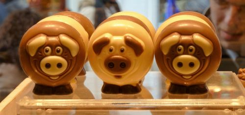 food chocolate pigs